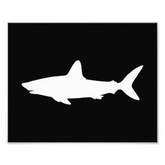 Swimming Shark Photo Art