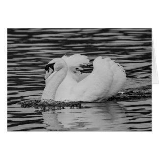 Swimming Swan Card