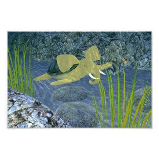 Swimming Turphant Art Photo