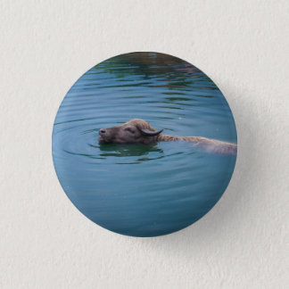 Swimming Water Buffalo 3 Cm Round Badge