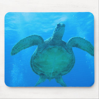 Swimming with Sea Turtles in Hawaii 1 Mouse Pad