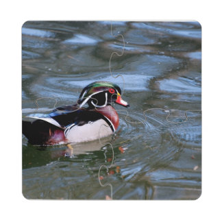 Swimming Wood Duck Puzzle Coaster