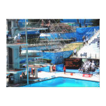 SWIMMING WORLD CHAMPIONSHIP ROME 2009 STRETCHED CANVAS PRINT