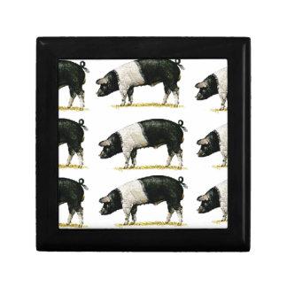 swine in a row gift box