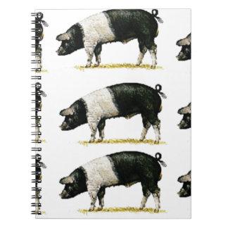 swine in a row notebook