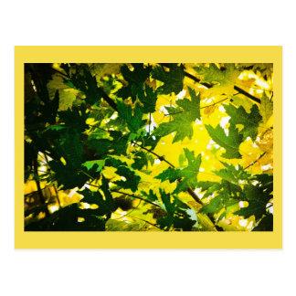 Swinging Summer Leaf Dreams Postcard