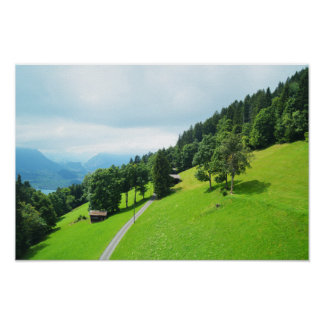 Swiss alps in summer poster