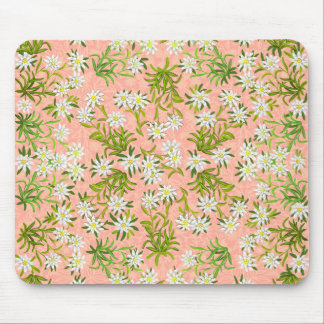 Swiss Edelweiss Alpine Flowers Mousepad