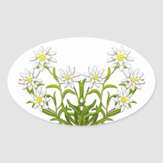 Swiss Edelweiss Flowers Sticker