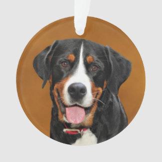 Swiss Mountain Dog Ornament