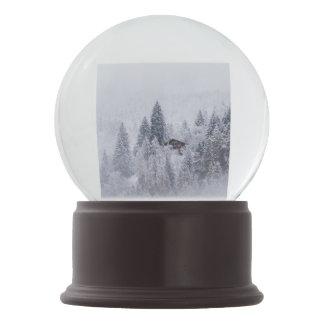 Swiss Winter Snow Globe Snow Globes