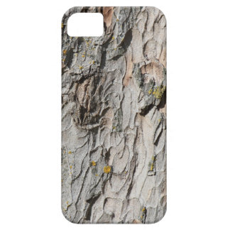 Sycamore Bark iPhone 5 Cases