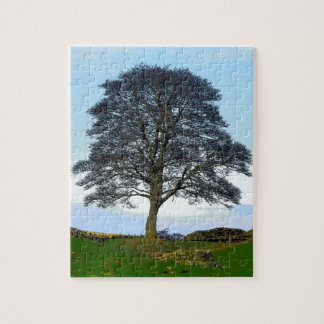 Sycamore Gap Puzzle/Jigsaw Jigsaw Puzzle