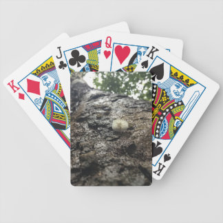 Sycamore Tower Bicycle Playing Cards