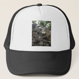 Sycamore Tower Trucker Hat