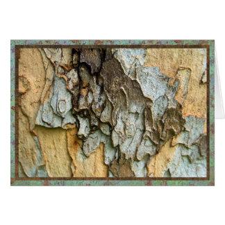 Sycamore tree bark photo card