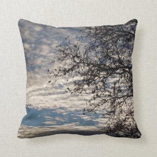 Sycamore Tree in Cloudy Sky near Sundown in Winter Cushion