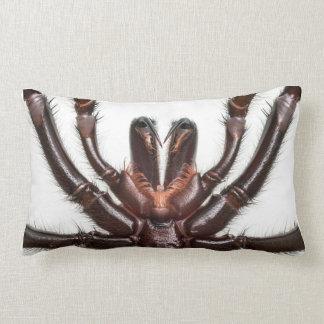 Sydney Funnel-Web Spider Lumbar Cushion