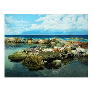 Sydney Great Barrier Reef Postcard