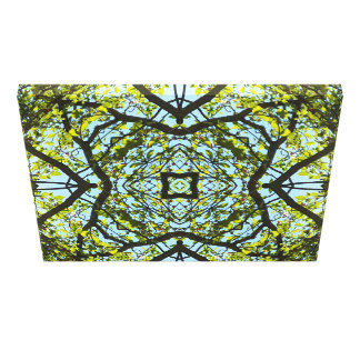 Symmetry Pattern Looking up Through Tree Canvas Print