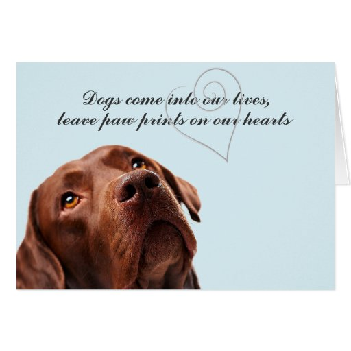 Sympathy Card for Loss of a Dog