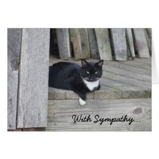Sympathy Card -- Loss of Cat