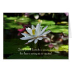 Sympathy Card - Water Lily