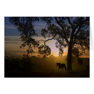 Sympathy for loss of horse oak tree and sunset greeting card