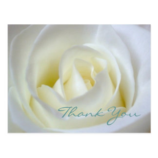 Sympathy / Funeral Thank You Postcard