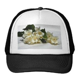 Sympathy Trucker Hats