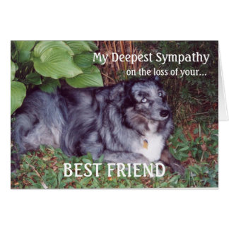 Sympathy on loss of pet-Dog/with poem Greeting Card