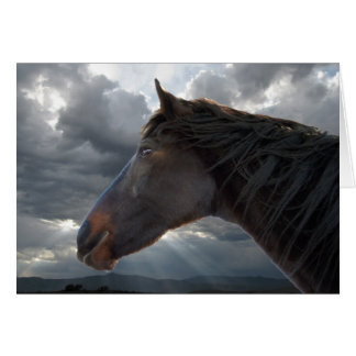 Sympathy Support & Comfort - Horse Lover Card