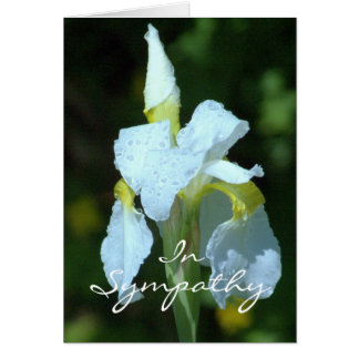 SYMPATHY/WHITE IRIS WITH RAINDROPS/SO SORRY FOR LO NOTE CARD