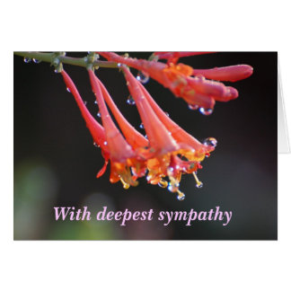 Sympathy - With deepest sympathy penstemon Greeting Card