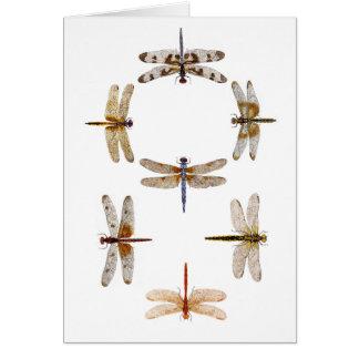 Synchronized Flying Dragonflies Card