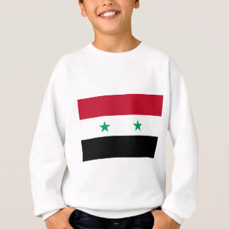 Syria flag sweatshirt