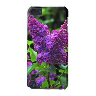 Syringa iPod Touch 5G Case