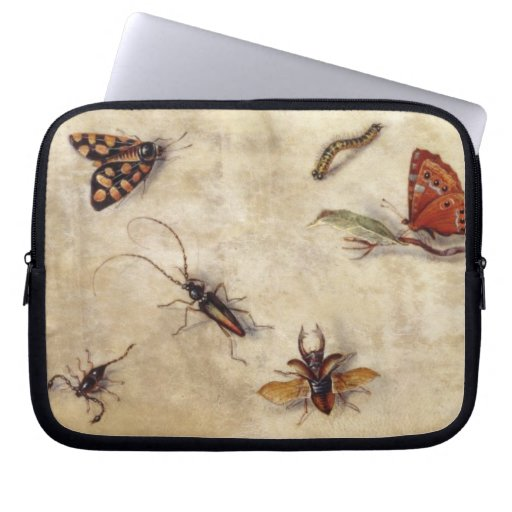 T31567 A Study of Various Insects, Fruit and Anima Laptop Computer Sleeves