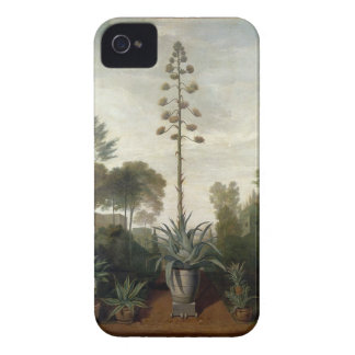 T33047 A Botanical Garden iPhone 4 Covers