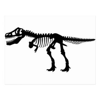 T Rex Dinosaur Skeleton Postcard