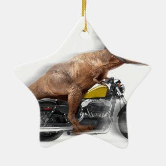 T rex motorcycle-tyrannosaurus-t rex - dinosaur ceramic ornament
