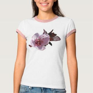 T-shirt - Flowering plumb