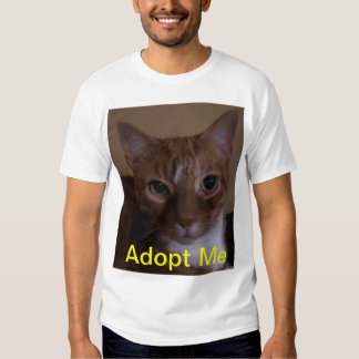 T Shirt For Cat Lovers!