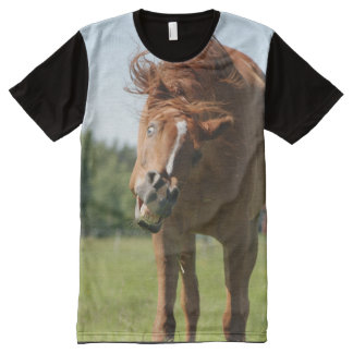 T-Shirt: Señor Eduardo Portrait All-Over Print T-Shirt