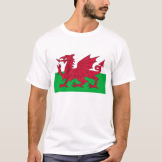 T Shirt with Flag of Wales.