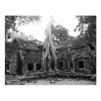 Ta Prohm Postcard
