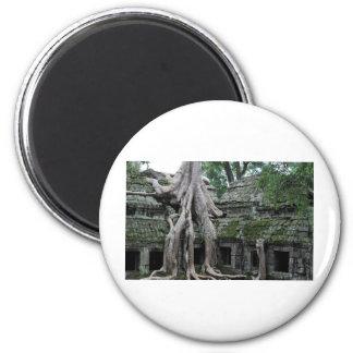ta prohm temple  in cambodia 6 cm round magnet