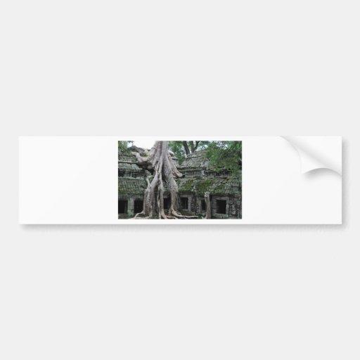 ta prohm temple  in cambodia bumper sticker