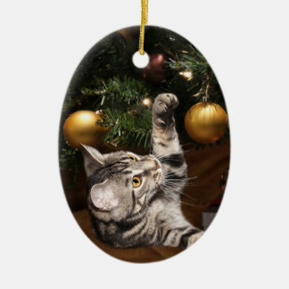Tabby cat and Christmas tree Ceramic Ornament