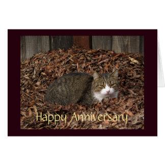 Tabby Cat Blank Anniversary Card